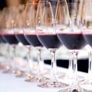 vitis house wine school